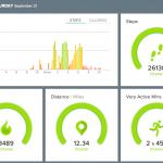 Fitbit Stats - 20130921